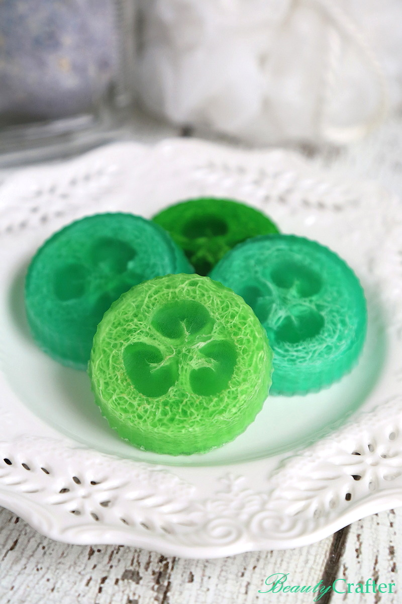 DIY Loofah Soap Recipe