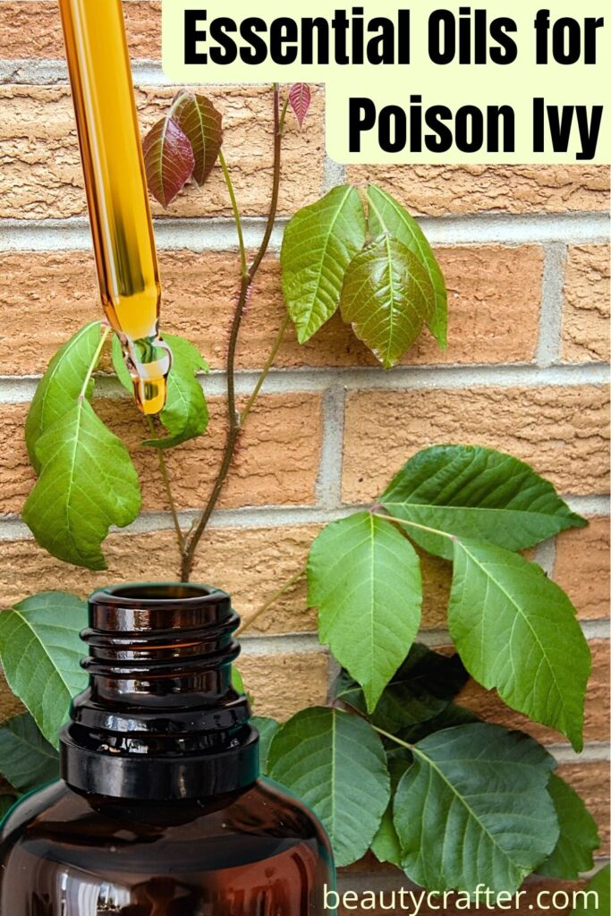 essential oils for poison ivy with plant and oil bottle.